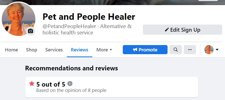Screenshot of reviews from Pet and P healer July 2021